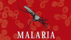 malaria-biblioteca-nacional-cruz-roja-espanola-cresib-y-obra-social-caja-madrid