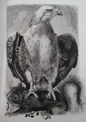 cynegetique-dibujo-original-a-plumilla-firmado-por-tremois-duran-abril-09