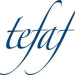 TEFAT 2010