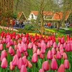 Holanda 12