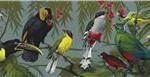 Aves Tropicales. ilustración de El Mundo de las Aves. Original gouache sobre papel. Est. 15,000-25,000 dólares