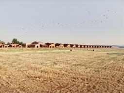 RM_255px_expo_Complejo_turistico_y_de_ocio_Calatrava