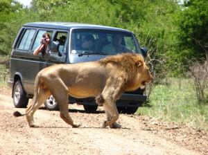 Sudáfrica (14)