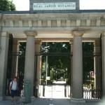 Real Jardín Botánico, Madrid -LOGOPRESS (23)