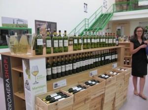 Ruta del vino de Rueda (10)