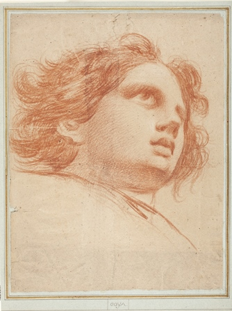 D04394 Cabeza de ángel. Goya. Museo NPrado