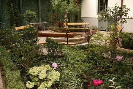 Jardín-Magnolio-Museo del Romanticismo