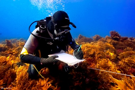 02/April/2013 Western Australia.UWA researchers working at Abrolhos Islands.Gary Kendric..©†JOAN COSTA.