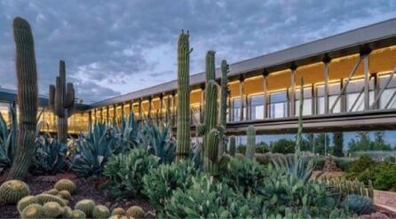 Madrid abre el jard n de cactus m s importante de europa revista de arte logopress - Jardin de cactus madrid ...